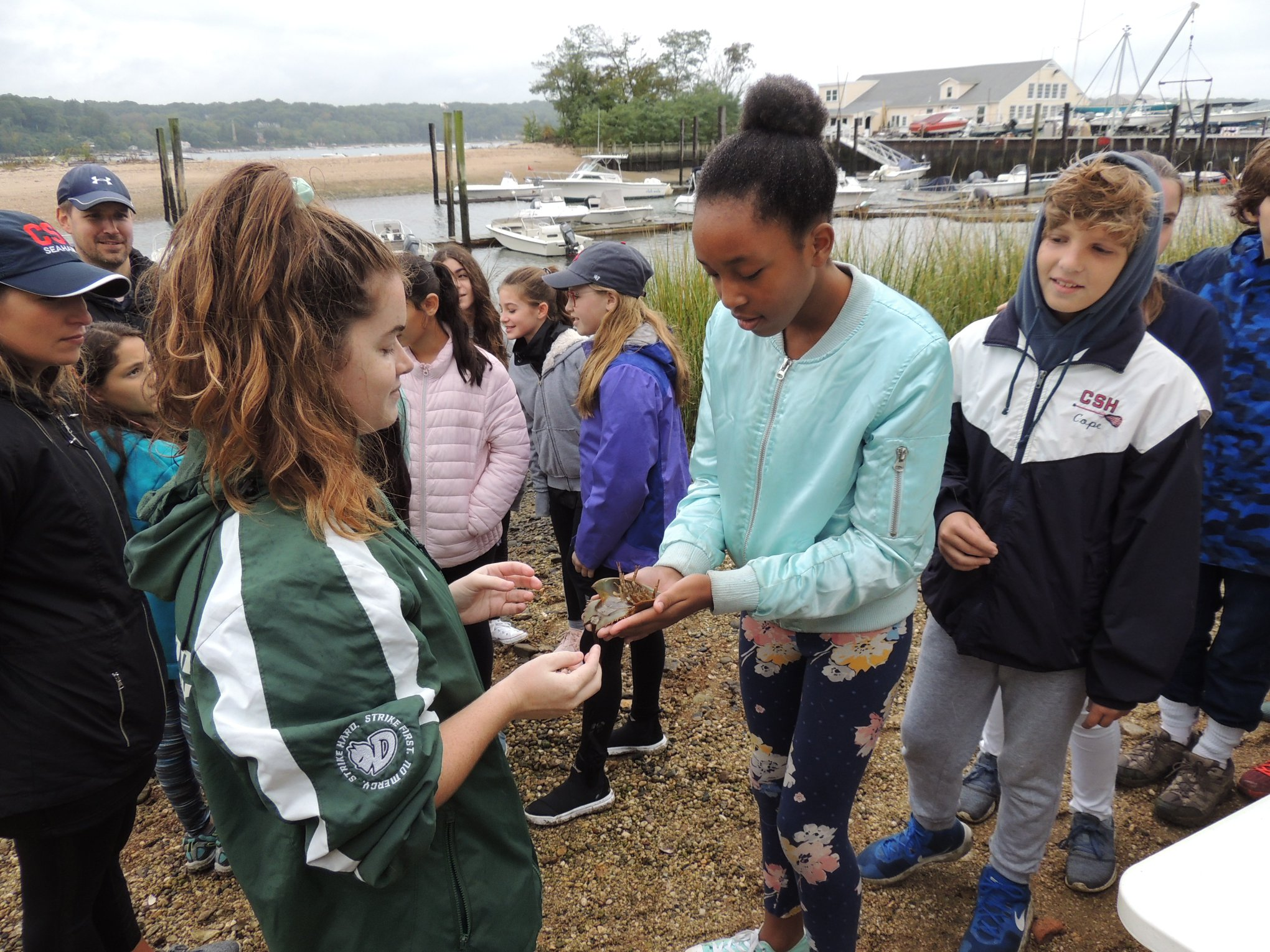 LH Field Trip to Shore Road Preserve